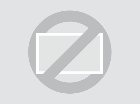 Touchscreen 12 pollici metallo